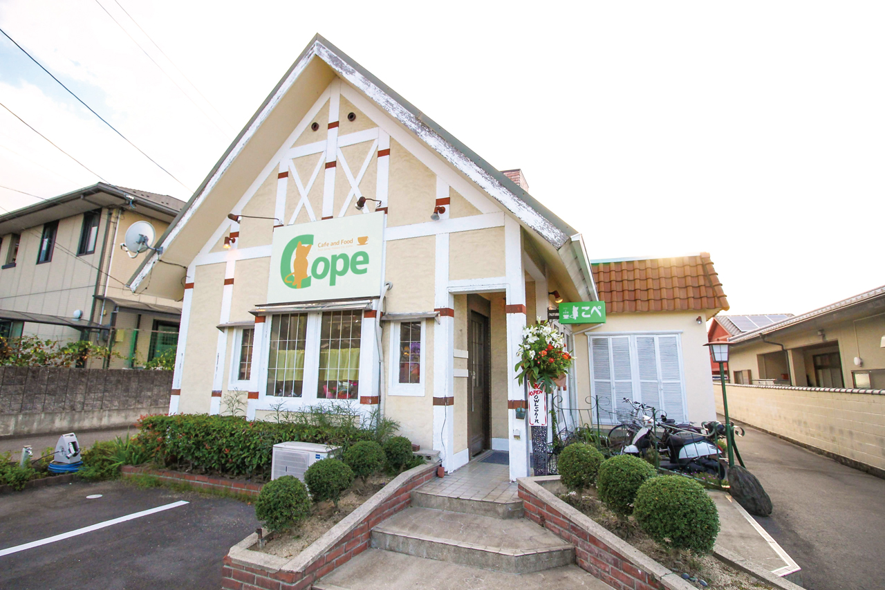 cafe and food Cope